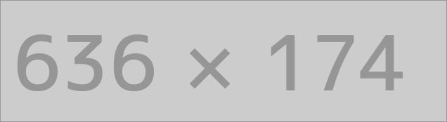 Theme Options Administrator settings